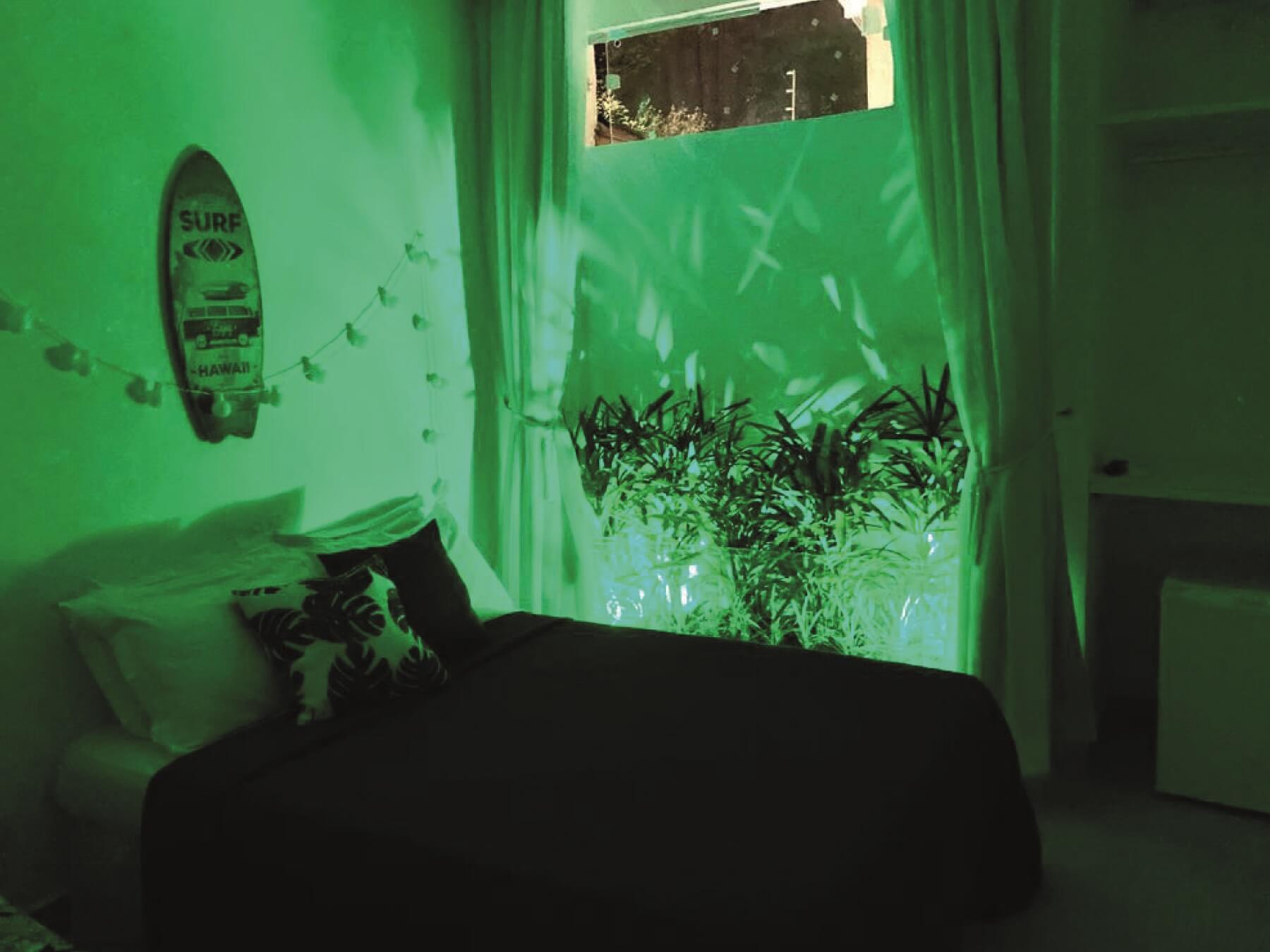6 Suite • California_2